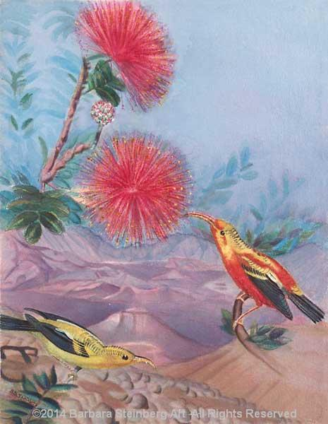O'hia-Lehua Blossom and Iiwi Bird giclee fine art reproduction
