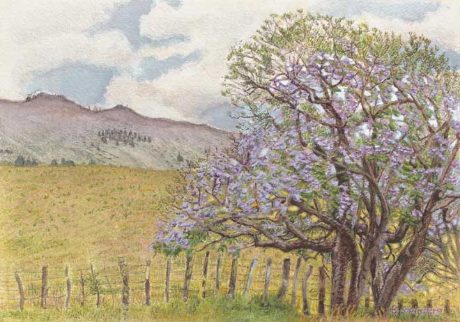 Sunny Jacaranda Meadow giclee fine art reproduction