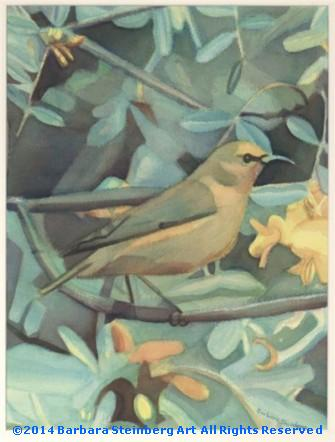 Amakihi Bird with Mamane Blossoms giclee fine art reproduction